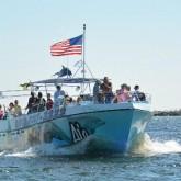 Destin dolphin cruise