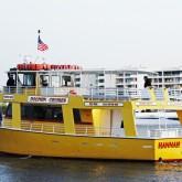 dolphin cruise destin